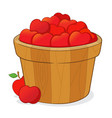 bucket full of red apples vector image vector image