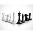 Chess Pieces vector image