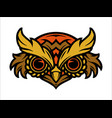 colorful owl head concept vector image vector image