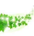flying maple leaves vector image vector image