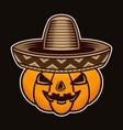 halloween pumpkin in sombrero hat character vector image