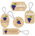 labels with various fruitsfor grape vector image