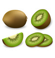 kiwi fruit food slice icons set realistic style vector image vector image