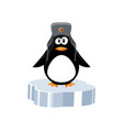 penguin on ice floe vector image vector image