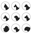 Set of silhouette dogs heads