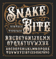 snake bite a vintage decorative typeface vector image vector image