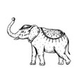 circus elephant engraving vector image vector image