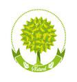 emblem of tree with leaves and ribbon vector image vector image
