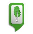 map sign birch tree icon cartoon style vector image