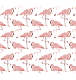 Seamless pattern of pink flamingo vector image vector image
