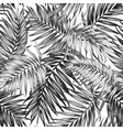 seamless pattern tropic jungle leaves black white vector image