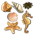 set sea animals isolated on white background vector image