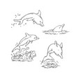 sketch set dolphins jumping dive and swim vector image