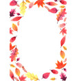 sweet color autumn leaves freme watercolor vector image vector image