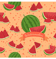 Watermelon Seamless Pattern Banner vector image