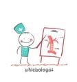 phlebologist vector image
