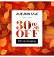 Autumn sale background with alder leaves vector image vector image