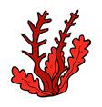 comic cartoon seaweed vector image vector image