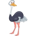 Ostrich cartoon vector image
