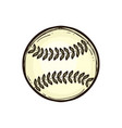 leather baseball ball isolated equipment for game vector image