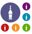 design bottle icons set vector image vector image