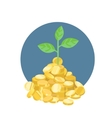 plant growth from coins vector image vector image