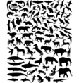 animal outlines vector image vector image