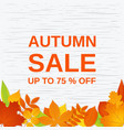 autumn sale banner poster template with fall vector image