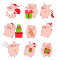 collection of cute pigs vector image vector image