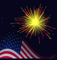 united states flag and radiant yellow red green vector image vector image