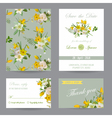 Wedding Invitation Congratulation Card Set vector image vector image
