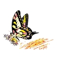Colorful hippy butterfly vector image vector image