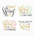 handwritten calligraphic spring lettering set vector image vector image