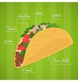 Taco isolated Mexican food vector image
