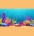 underwater world sea bottom algae and coral reef vector image vector image