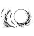 wheat rye barley round frame or wreath vector image