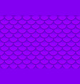 seamless pattern of colorful violet purple fish vector image