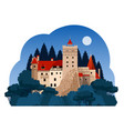 bran castle at night vector image
