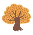 cartoon tree in autumn child vector image
