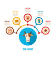 cow farming icon and agriculture infographics vector image vector image