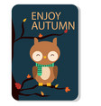 enjoy autumn owl background image vector image