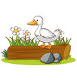 isolated picture duck on log vector image vector image