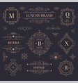 luxury brand vintage labels and logotypes vector image