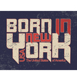 New York city Typography Graphic Guote BORN vector image