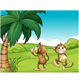 Two monkeys near the coconut tree vector image vector image