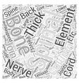 Back Pain and Diagnosis Word Cloud Concept vector image vector image