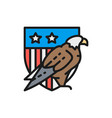eagle with usa shield coat arms america vector image vector image