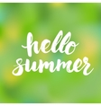 Hello summer card with hand drawn brush lettering vector image