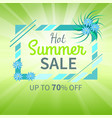 hot summer sale poster up to 70 off banner vector image vector image