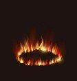 isolated of fire flames vector image